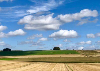 View From Avebury